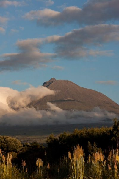 Viagem à ilha do Pico - Açores