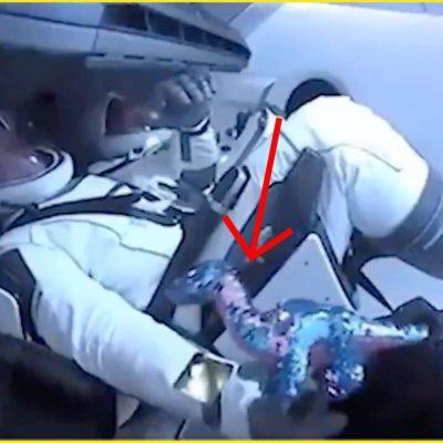 SpaceX: peluche enviado para o espaço, porquê?