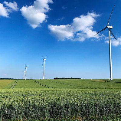 Foto do dia – renovável