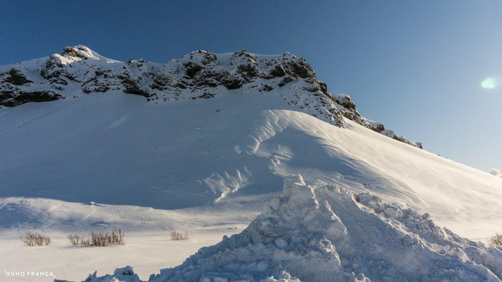 Foto do dia - corvo (Islândia)